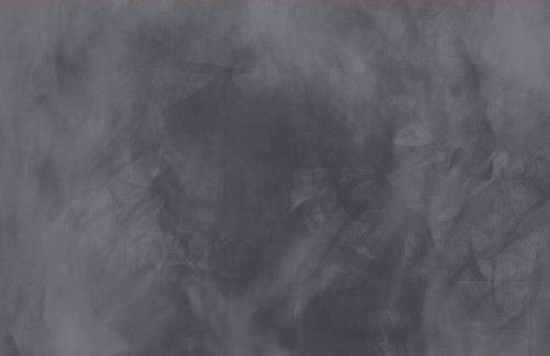 Veil of Neptune